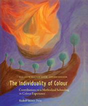THE INDIVIDUALITY OF COLOUR
