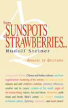 FROM SUNSPOTS TO STRAWBERRIES...